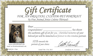 Pet Portrait Gift Certificate by Animal Artist Colette Theriault
