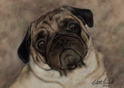Pug Portrait Painting in Pastel by Animal and Pet Artist Colette Theriault
