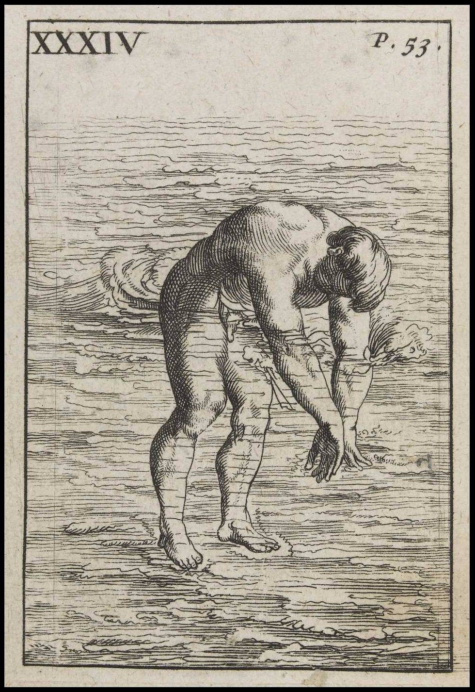 swimming manual picture of man standing in water bent over with submerged hands, about to dive in
