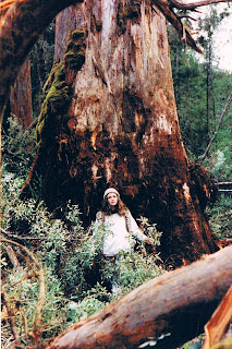 Girl standing in front of a huge tree