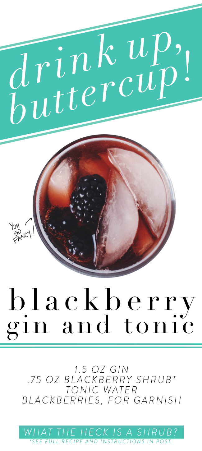 Blackberry-Gin-and-Tonic.png