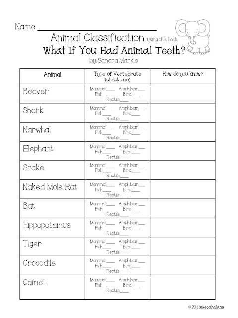 Images Of Animal Adaptation Worksheet Spacehero
