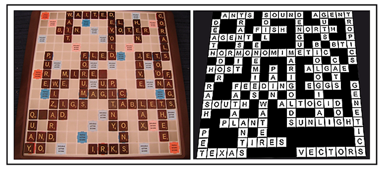 Iqs corner psychologists have compared the mental abilities of psychologists have compared the mental abilities of scrabble and crossword champions feedly malvernweather Images