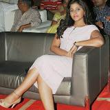 Anjali latest Stills (34)