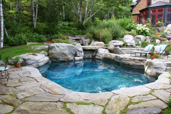 natural pool in backyard | Manufacturers Outdoor Furniture
