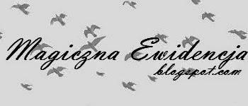 Magiczna Ewidencja