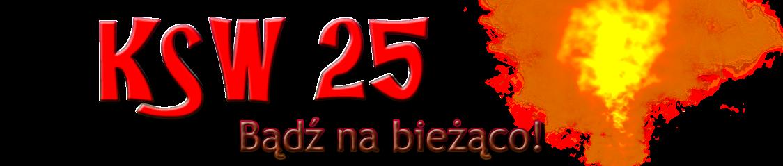 KSW 25 online live. Jak oglądać transmisję ksw 25 stream na żywo?