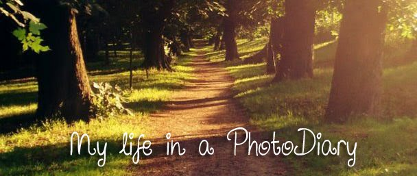 My life in a PhotoDiary