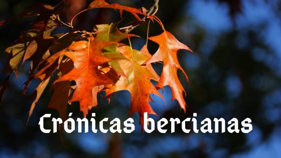 Crónicas bercianas