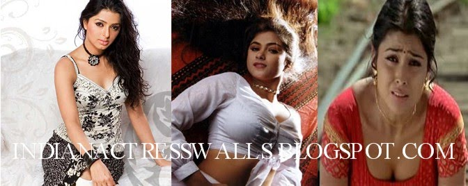 South Indian Celebrities Galleries, Wallpapers, Gossips and News