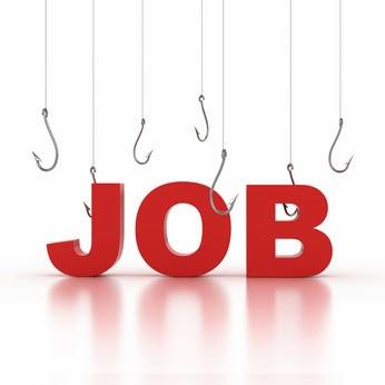 Job Opportunité