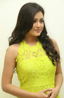 Actress Mishti Chakraborty Picture Gallery in Long Dress at Chinnadana Nee Kosam Audio Launch freshgallery.in27.jpg