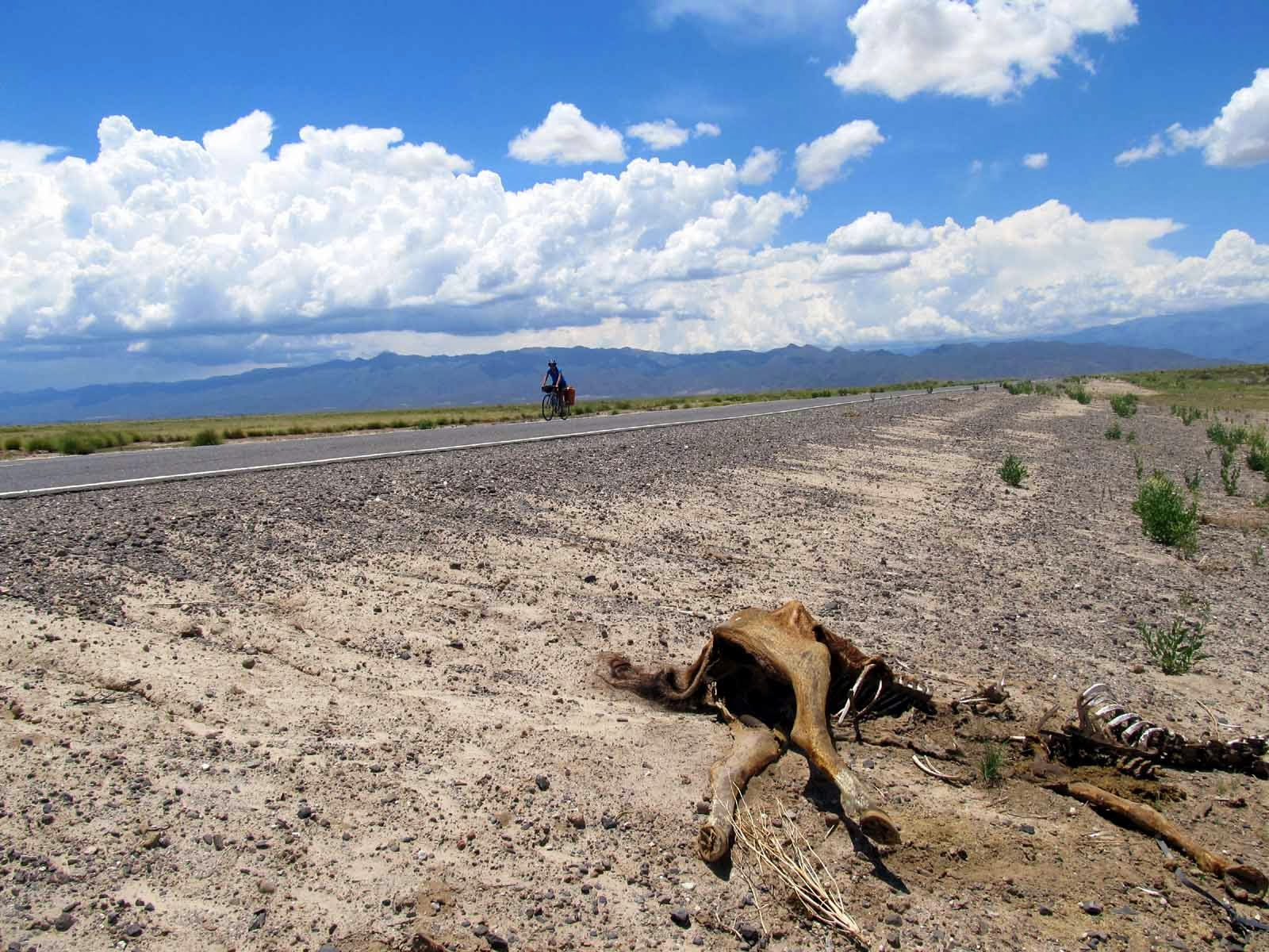Rob Amys Most Excellent Adventure South America And A Bit Of The Caribbean Ruta 40 Into Deserts Northwest