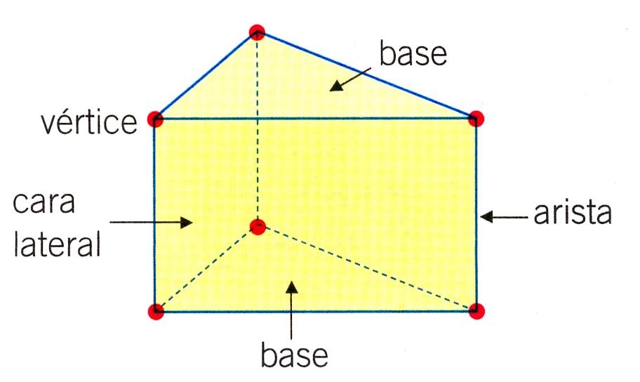 elementos de los cuerpos geométricos