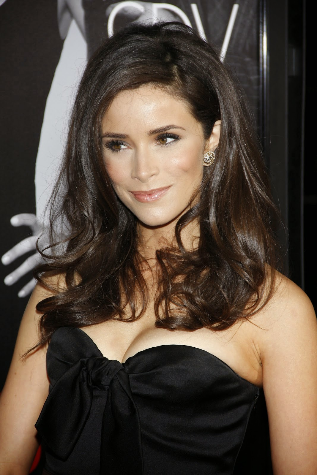 Belle actrice Abigail Spencer