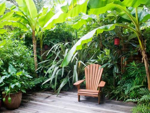 The  Best Ideas About Small Tropical Gardens On Pinterest Small Balcony Garden Decorative Cinder Blocks And Bamboo Grass