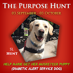 Hunt Starts 03 September!