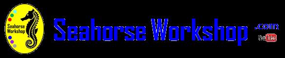 Seahorse Workshop