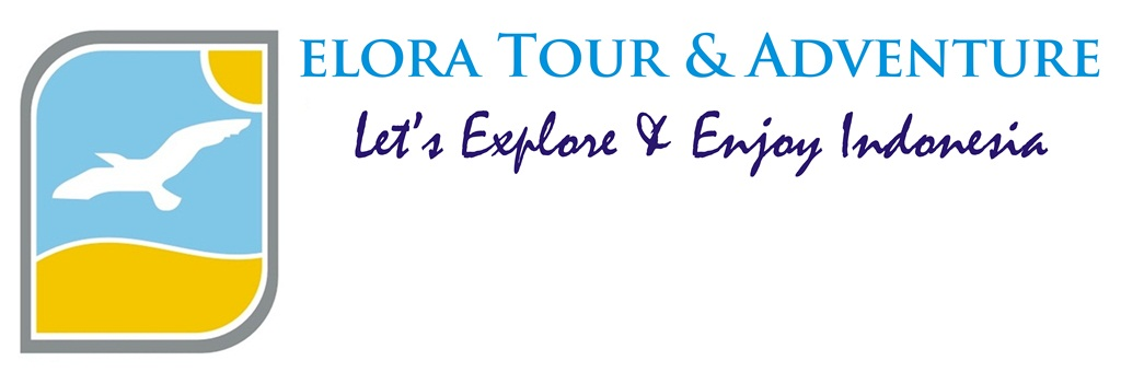 ELORA TOUR & ADVENTURE