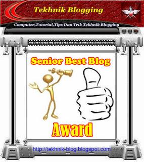 Senior Best Blog Award
