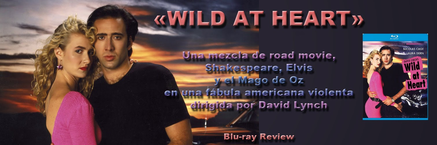 Wild at Heart: Discovering The Secret of a Man's Soul ...