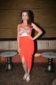 Surveen Chawla latest glamorous photos-thumbnail-18