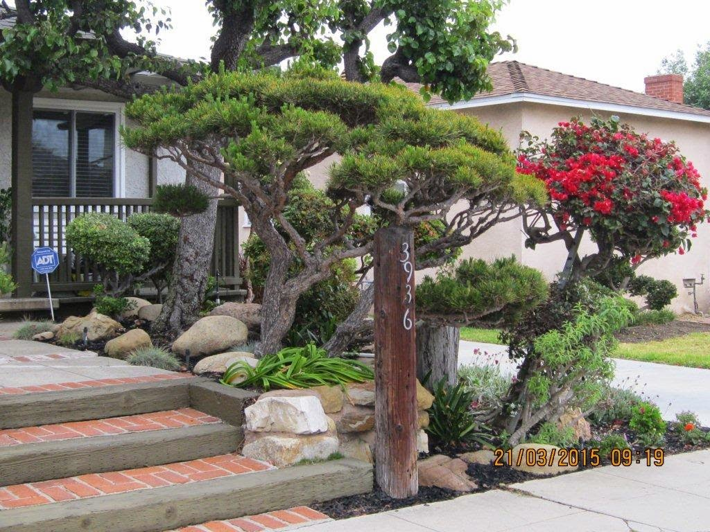 Mar vista green garden showcase 3936 minerva avenue for Easy gardens to maintain