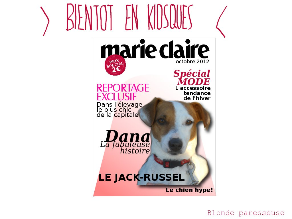 Blonde Paresseuse: Le chien démodé