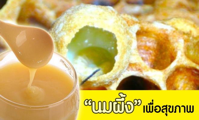 กินนมผึ้งหรือรอยัลลี่(Royal Jelly) เพื่อสุขภาพ