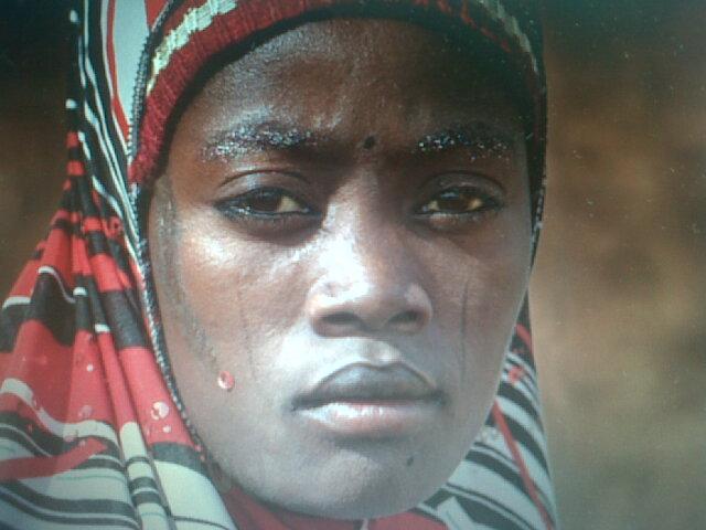 tig group kebbi in nigeria