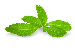 daun pemanis semulajadi stevia