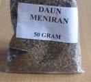 obat tradisional herbal daun meniran kering
