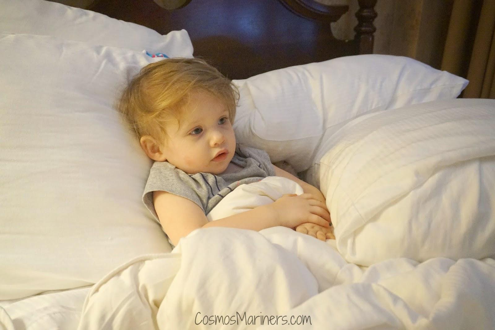 The Dunhill Hotel, Charlotte, North Carolina: A Hotel Review   CosmosMariners.com