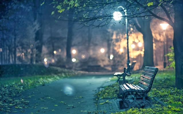 скамейка ночью под ночным фонарём