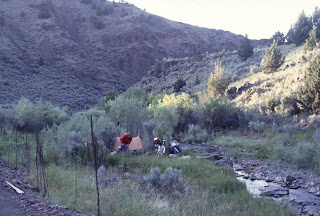 Camp in the creek
