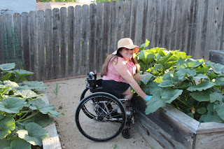 Ability Tools Weekly Gardening Access Assistive Technology