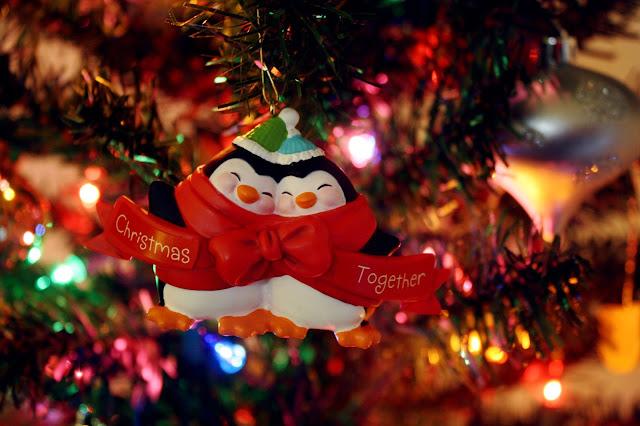 Beautiful Christmas photo