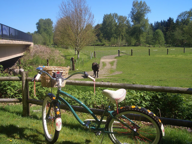 Electra Gypsy Cruiser, retro bicycle, Centennial Trail