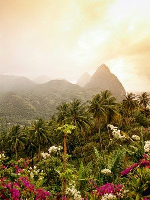 St. Lucia's glorious rain-forest and Pitons
