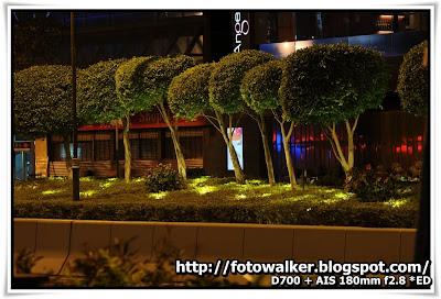 夜@尖沙咀海濱花園