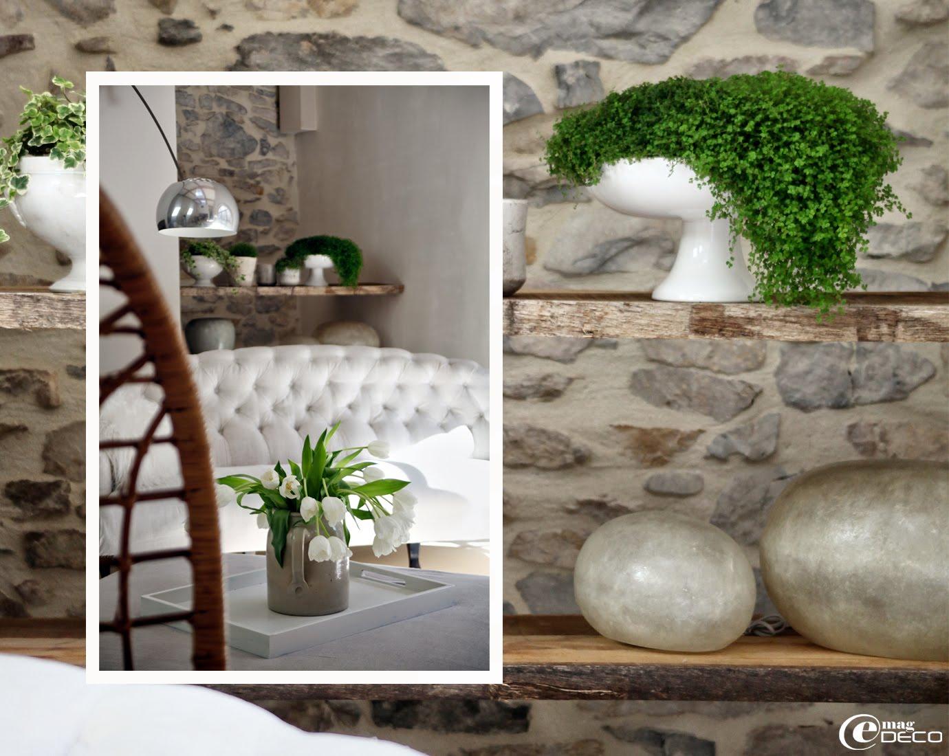 De simples plateaux de châtaigner bruts forment des étagères minimalistes dans un intérieur très actuel dans le Sud de la France