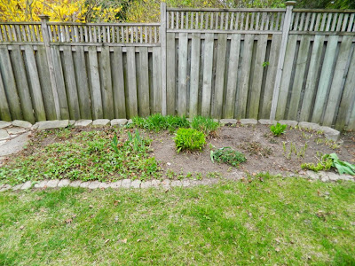 Garden cleanup Graydon after by Paul Jung Gardening Services Toronto