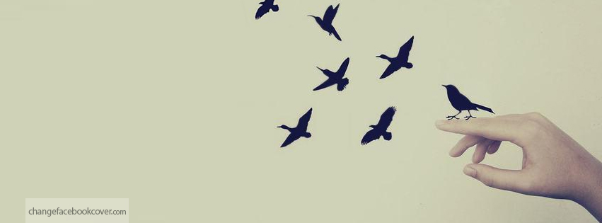 توقيتك مناسب Facebook-cover-creative-flying-birds-hands-background