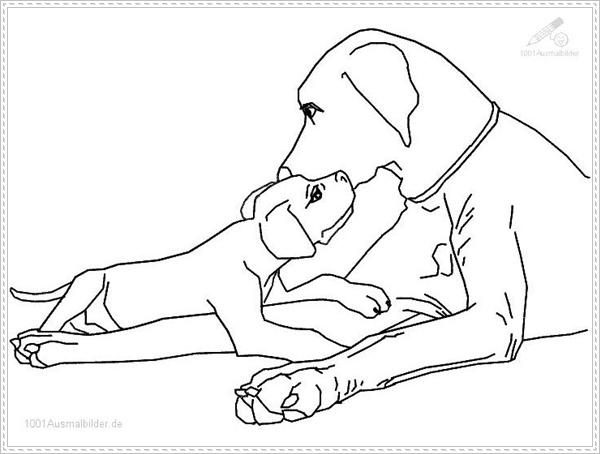 Kostenlose Ausmalbilder Hunde - HUNDE zum Ausmalen Welpe zum Ausmalen