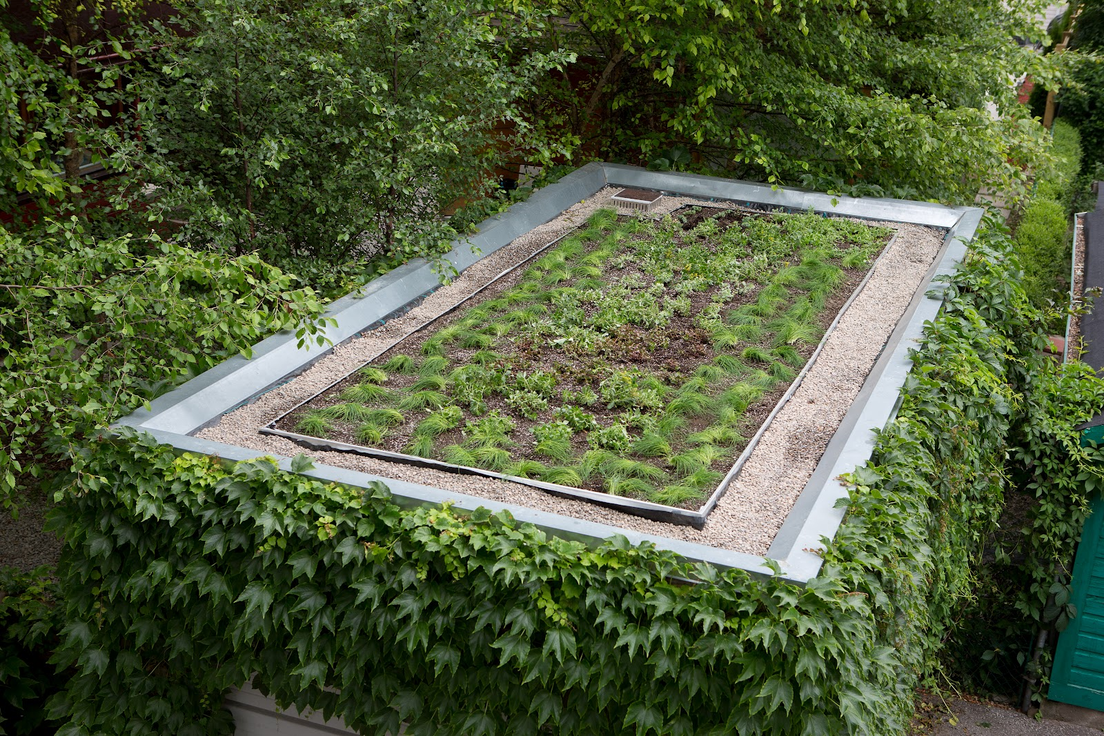 Living Architecture Daily: Green roof garage done!