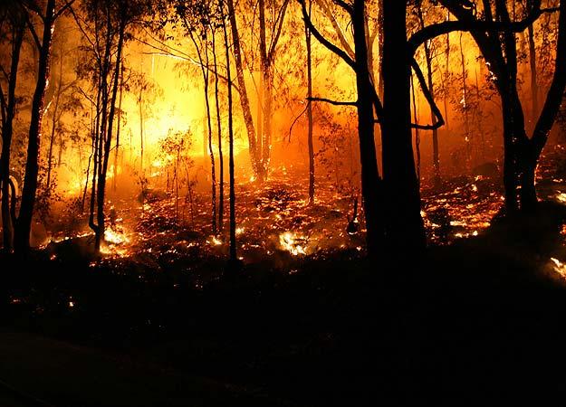 Bencana Alam Paling Aneh Di Dunia Berita Aneh Dan Unik | Review Ebooks