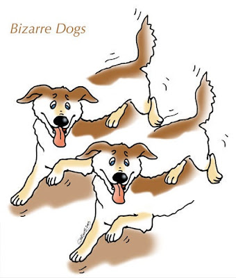 Bizarre dogs optical illusion