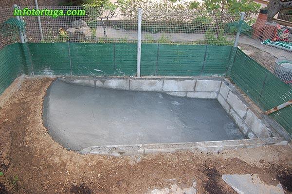 Un zoo en casa enero 2013 for Estanques pequenos para tortugas