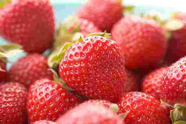 Zekayı geliştiren besinler (Çilek)