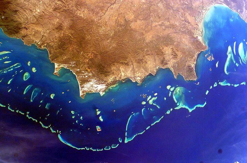 eutrophication&hypoxia Great Barrier Reef, Australia https://www.flickr.com/photos/48722974@N07/5093723696/in/photolist-91shvW-5w9sqC-bUL52L-bARkuF-oZ4DjD-9PqSyd-oDCmjp-dxNCMf-7dRfHA-92ovCb-nhNGq1-9QZNLw-bnWmc9-98cxQE-37z2C2-8L7EAm-cQZbq5-7tFo5g-gqgAZj-6tBwB-9QZPXN-8ek6w6-ehRoem-bARbgp-bAR83k-oDBrdB-p7qfCy-9uh9sc-bARa1x-pNZtk1-fFgqFF-grTuPe-grTfJ3-hMNwxi-oW5FA7-6NwjG9-aMZYRe-oDCnZt-q2EBwq-7tFjm4-bARc6v-grTjbJ-zZvy1-zZvxY-6erQZF-zZsmF-bnWhuh-7tFnyH-gqqXvo-fU8Mbp